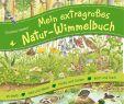 Natur Und Garten Schön Mein Extragroßes Natur Wimmelbuch Amazon