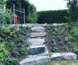 Natursteintreppe Garten Elegant Der Weg ist Das Ziel Gartengestaltung Garten