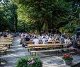 Neuer Garten Potsdam Elegant Best Beer Gardens to Visit In Berlin