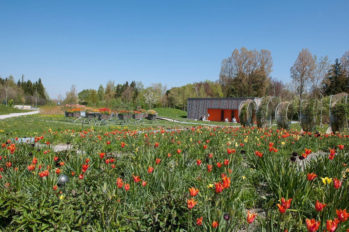Oranger Garten 1