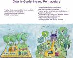 37 Schön Permakultur Garten Anleitung