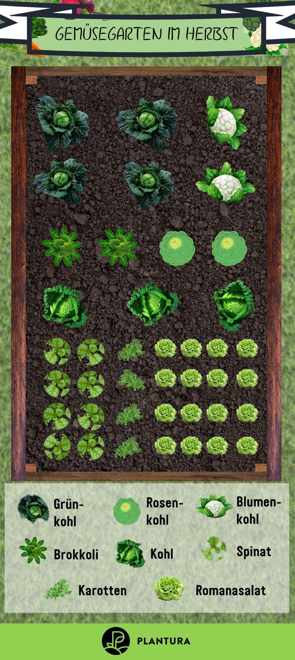 Permakultur Garten Planen Schön 1018 Best Fall Garden Ve Ables Images In 2020