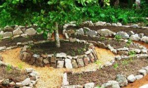 21 Elegant Permakultur Garten Planen
