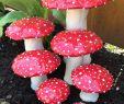 Pilze Im Garten Bilder Frisch Seven Ceramic Mushrooms Amanita Muscaria Handmade Ceramic
