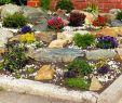 Reihenhausgarten Gestalten Ideen Neu Garten Ideen Ideen Kleiner Vorgarten Gestalten