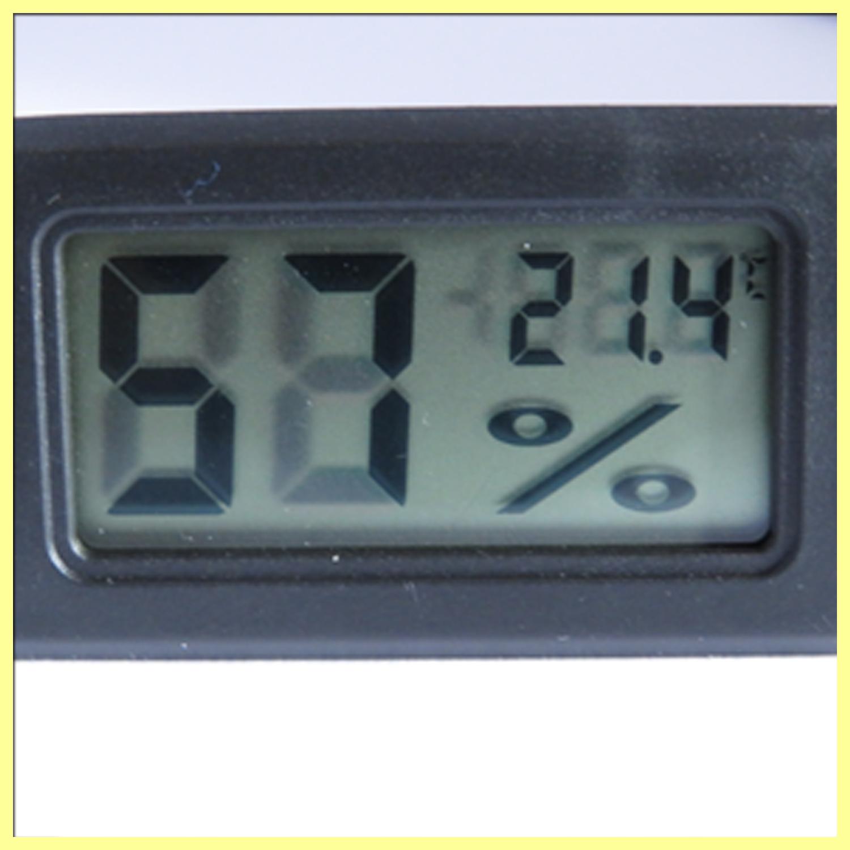 ameisenfarm antcube m thermometer