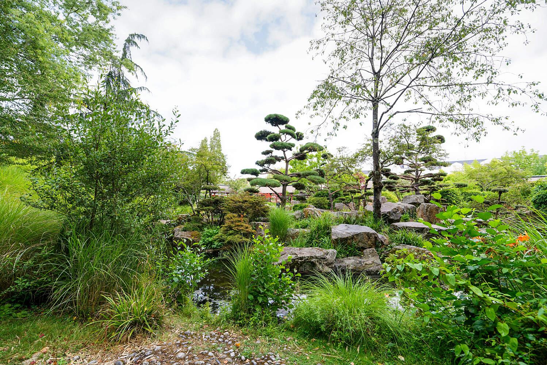 filenantes ile de versailles jardin japonais 21 big