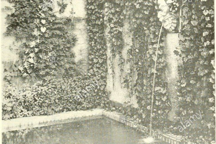 Schwimmingpool Für Garten Einzigartig T A T U Stock S & T A T U Stock Page 10 Alamy