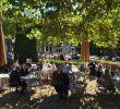 Seehaus Im Englischen Garten Luxus Sunshine Seehaus Im Englischen Garten In Munich More Pics