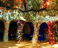 Tarot Garten toskana Genial Niki De Saint Phalle Lessons Tes Teach