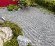 Terrasse Neu Gestalten Neu Pflanzen Im Japanischen Garten Neu Japanische Garten 0d