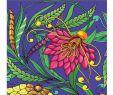 Test Blumenversand Einzigartig Farbtherapie Für Erwachsene Blumen