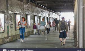 53 Elegant Tunnel Englischer Garten