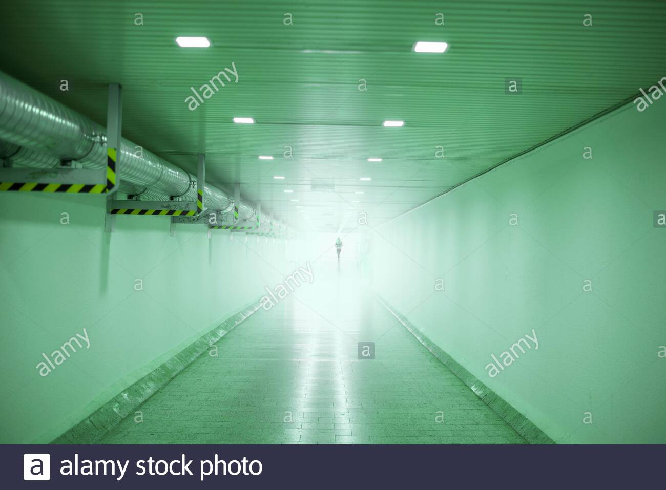 silhouette of person in underpass tunnel in green 2AKWRW3