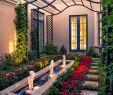 Vogel Garten Schön 23 Best Modern Mediterranean Homes
