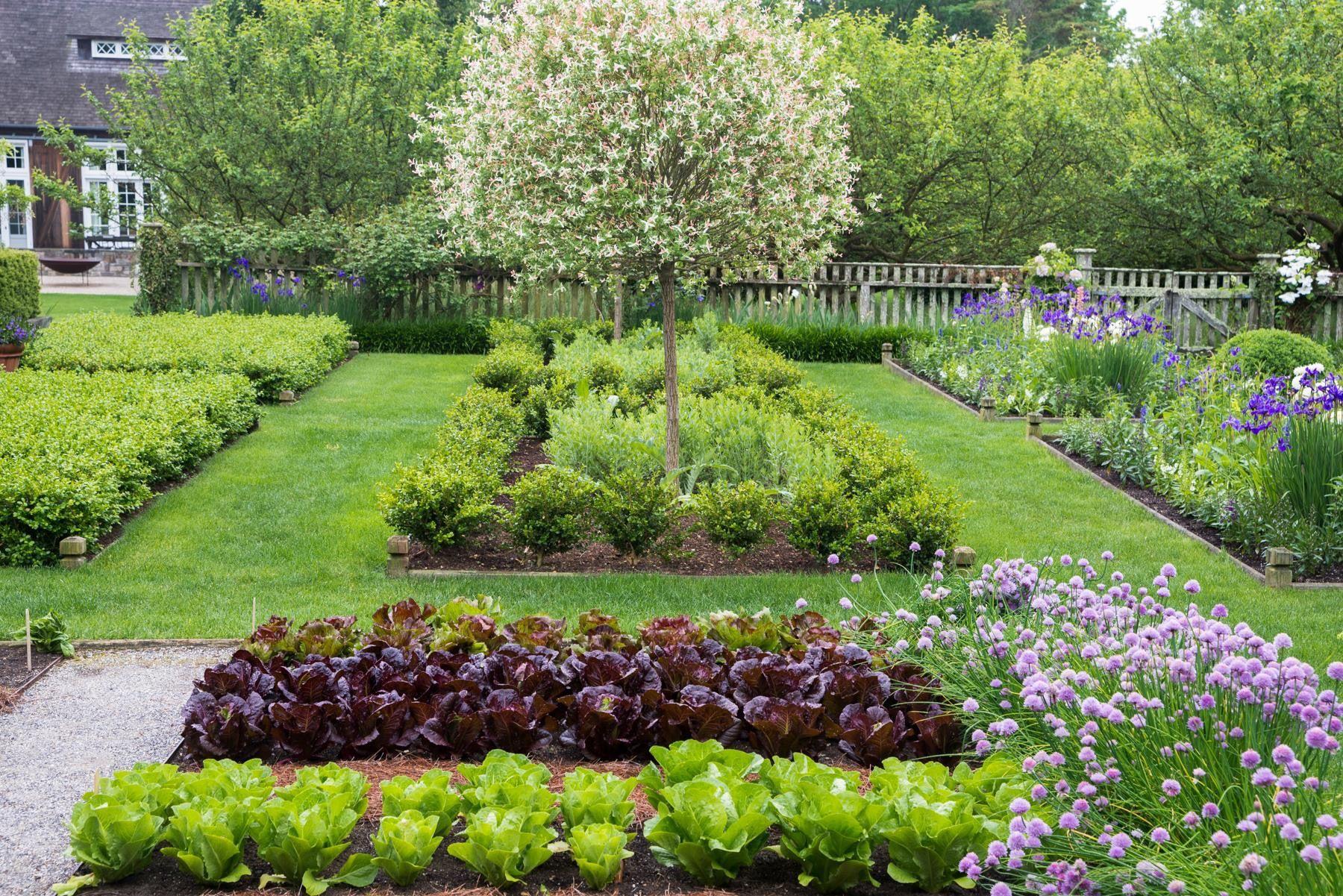 Vogel Garten Schön Ina Garten S Garden with Images