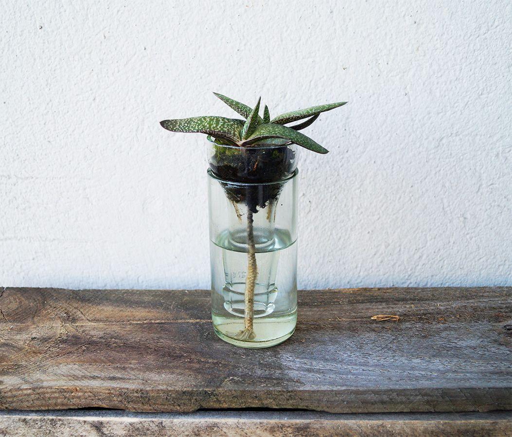 Wasserspender Garten Genial Wasserspender Aus Limoflasche
