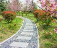 Wege Im Garten Anlegen Best Of Gartenweg Gestalten so Muss Das