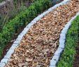 Wege Im Garten Anlegen Best Of Gartenwege Gestalten – Tricks Der Gartengestaltung