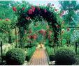 Wege Im Garten Anlegen Einzigartig Gartenweg Gestalten