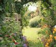 Wege Im Garten Anlegen Luxus Wege Im Garten Anlegen so Gehts Zuhause Bei Sam In Der