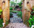 Wege Im Garten Anlegen Neu the Beauty Of the Garden Path 112 Exciting Design Ideas