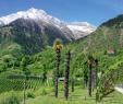Weinanbau Im Garten Inspirierend 4 Wege An Fels Und Waal Wanderpara S Algund Herrliches
