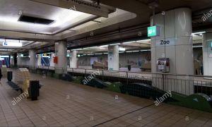 39 Frisch Zoologischer Garten Frankfurt